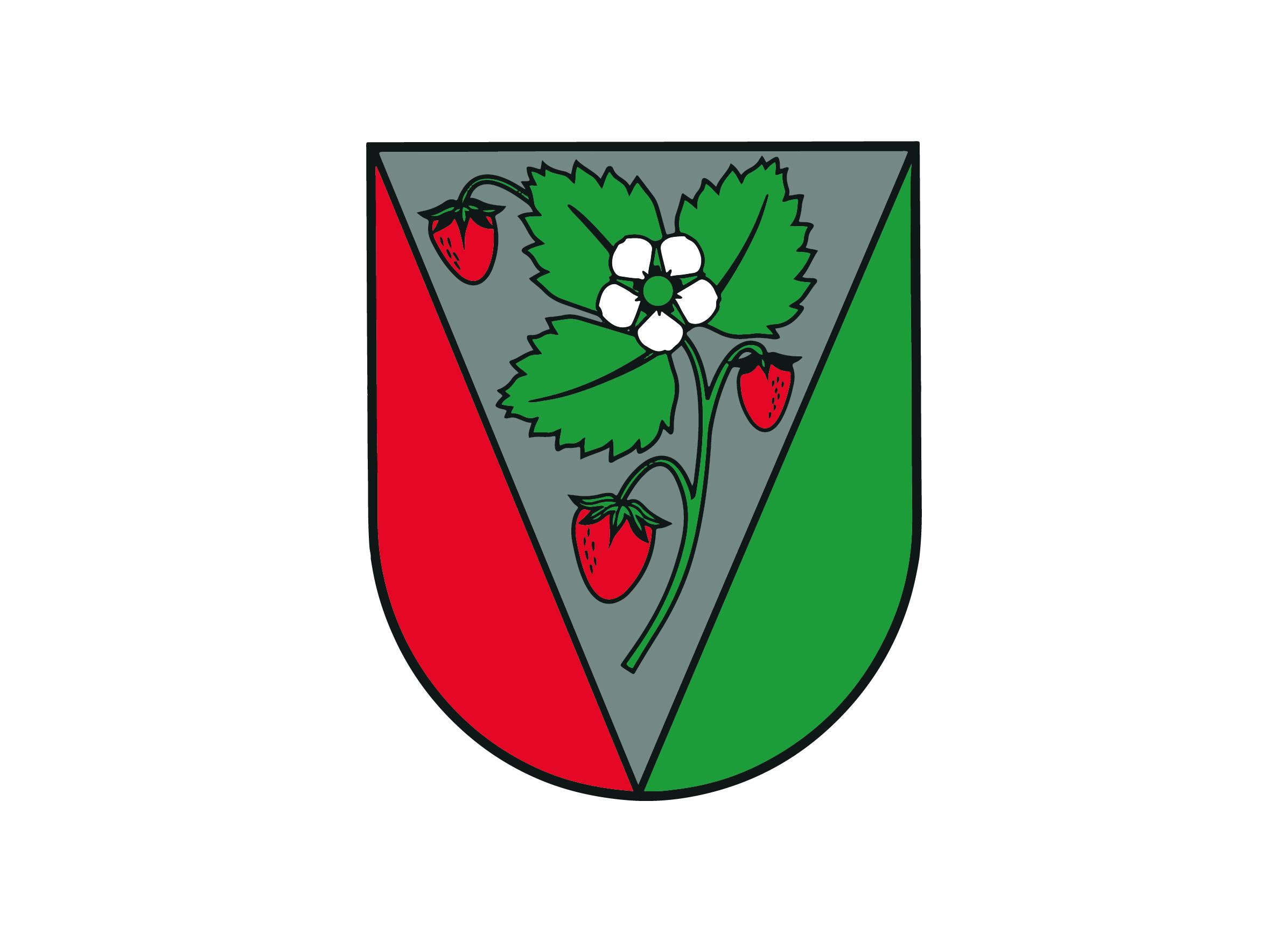<strong>Salas novada pašvaldība</strong>