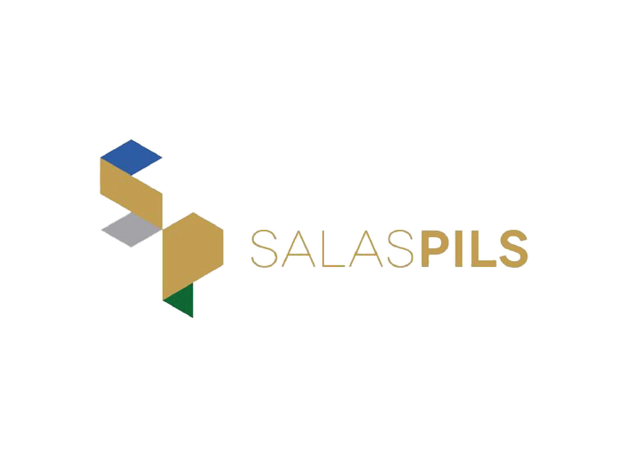 <strong>Salaspils novada dome</strong>